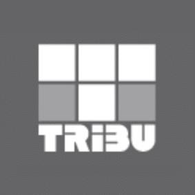 logo tribu ingenierie