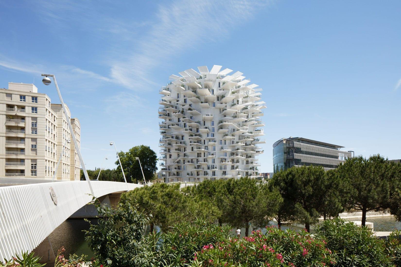 Maitrise D Oeuvre Montpellier l'arbre blanc de montpellier, le miroir architectural de